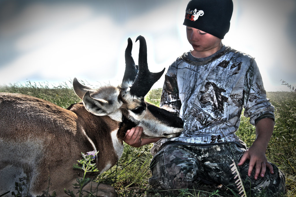 Antelope Tags