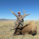 Elk Hunts for 2020 in Wyoming