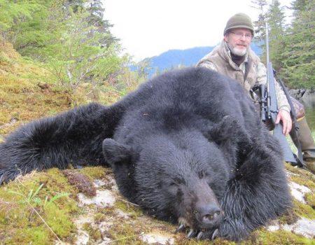 wta_1037__featured_DVBY6Y_bear