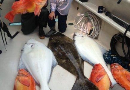 wta_1255__featured_IPKPXV_fish