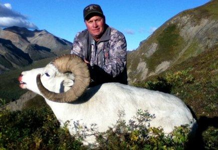 wta_1452__featured_LH07BM_079_sheep-40