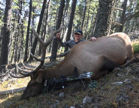 wta_1781__featured_FFW5WX_11youthbull