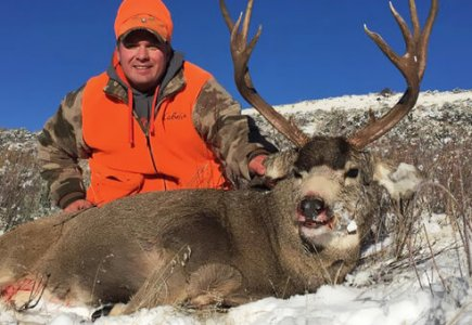 wta_498__featured_90KWS6_Jason_Deer