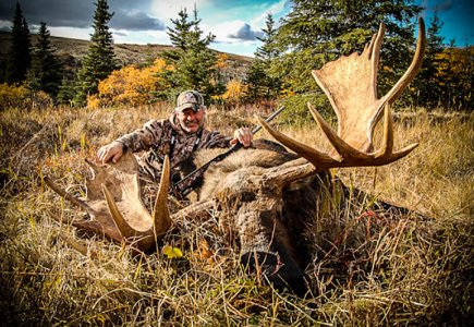 wta_739__featured_TN4L9Q_06-Moose(2)
