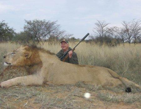 wta_951_5C785G_FranzNeuper-lion